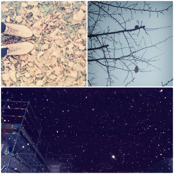 outono-inverno